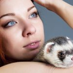 The B.A.R.F. Diet for Ferrets