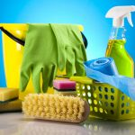What are the safest mold removal products?