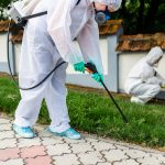 Top three types of termite exterminator treatments